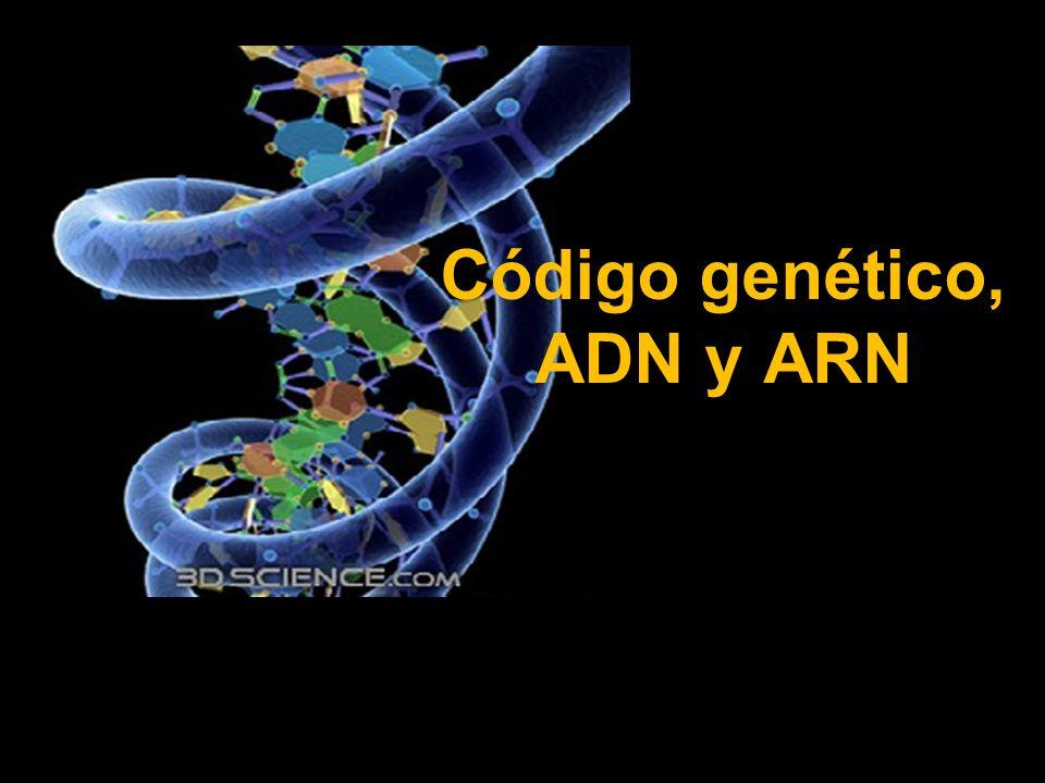 Código Genético, ADN Y ARN