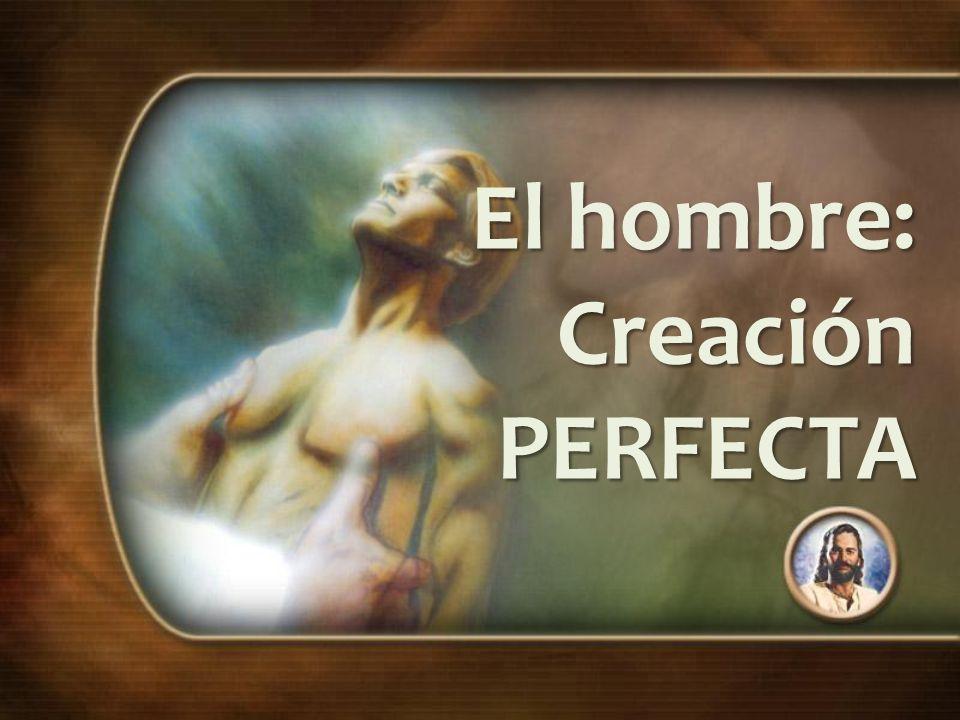 El hombre: Creación PERFECTA