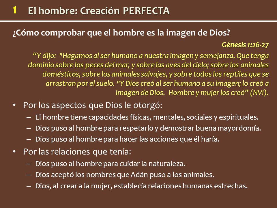 ¿Cómo comprobar que el hombre es la imagen de Dios