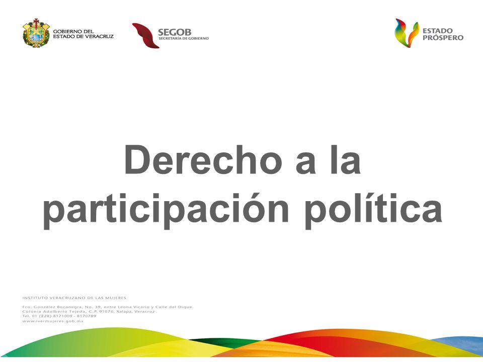 Derecho a la participación política