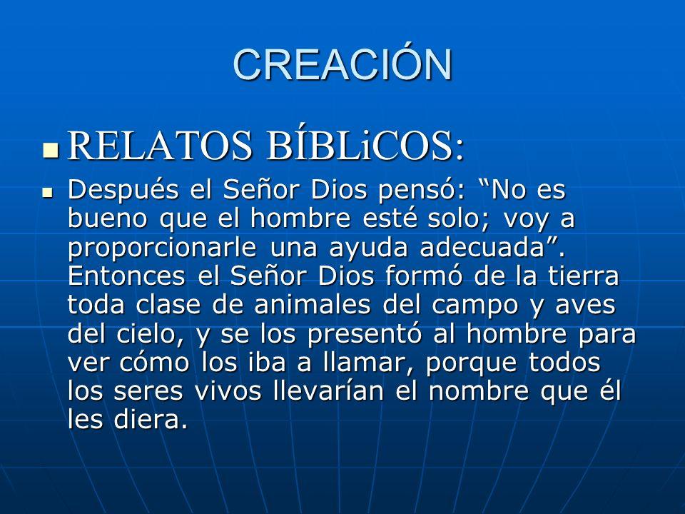 CREACIÓN RELATOS BÍBLiCOS: