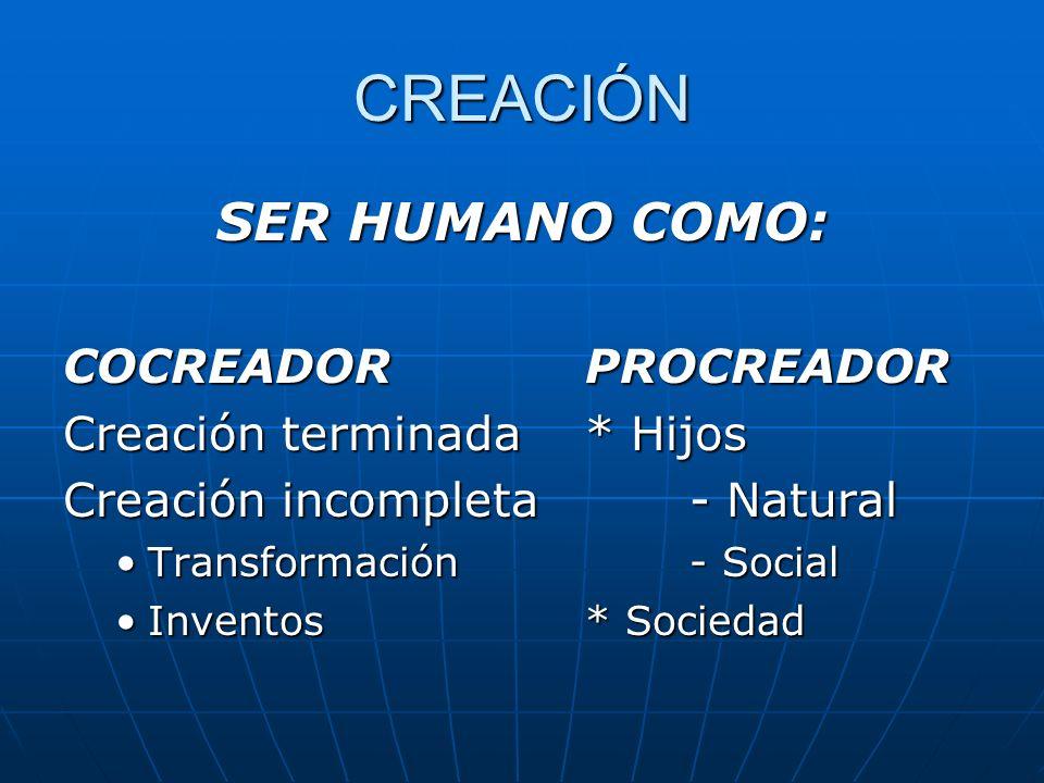 CREACIÓN SER HUMANO COMO: COCREADOR PROCREADOR