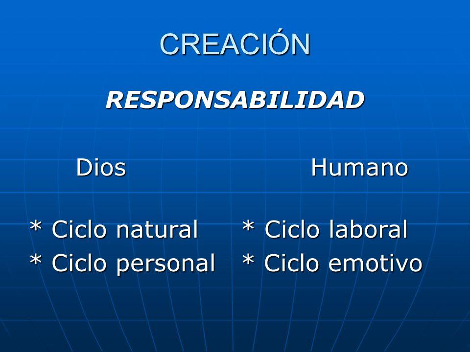 CREACIÓN RESPONSABILIDAD Dios Humano * Ciclo natural * Ciclo laboral