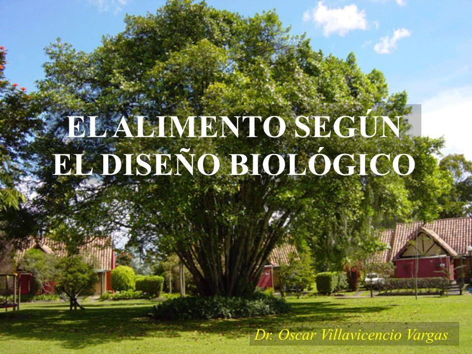 EL ALIMENTO SEGÚN EL DISEÑO BIOLÓGICO