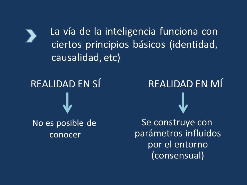 La vía de la inteligencia funciona con ciertos principios básicos (identidad, causalidad, etc)