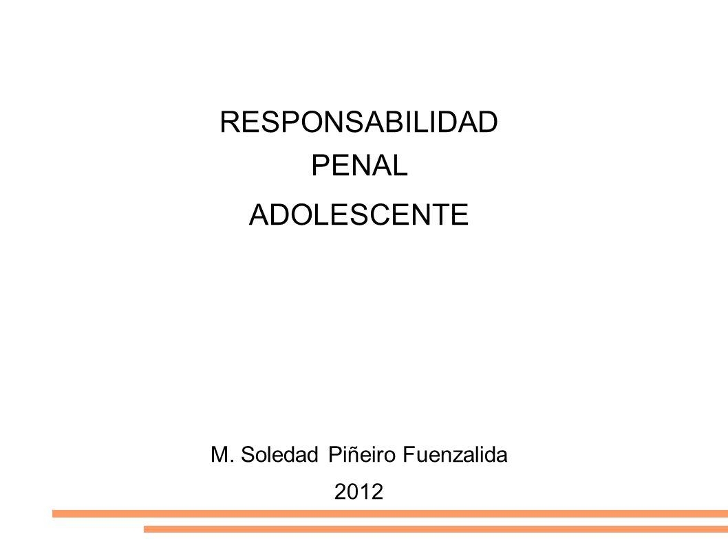 M. Soledad Piñeiro Fuenzalida