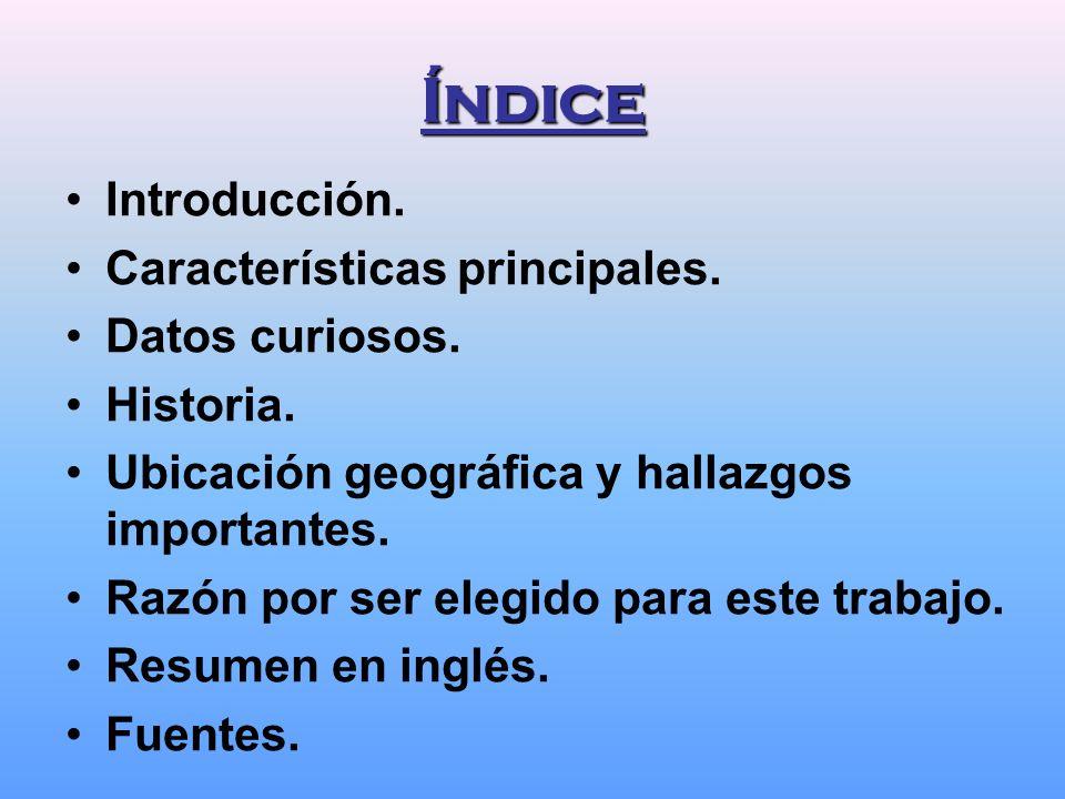 Índice Introducción. Características principales. Datos curiosos.