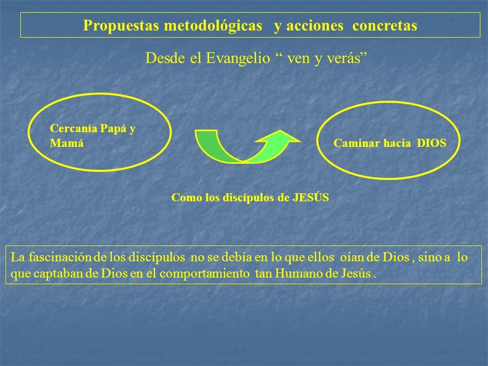 Propuestas metodológicas y acciones concretas