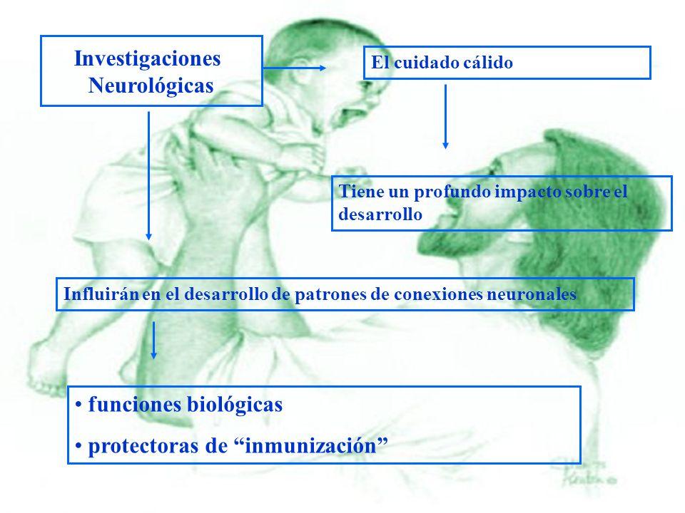 Investigaciones Neurológicas