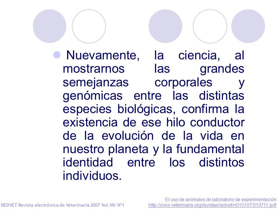 Nuevamente, la ciencia, al mostrarnos las grandes semejanzas corporales y genómicas entre las distintas especies biológicas, confirma la existencia de ese hilo conductor de la evolución de la vida en nuestro planeta y la fundamental identidad entre los distintos individuos.