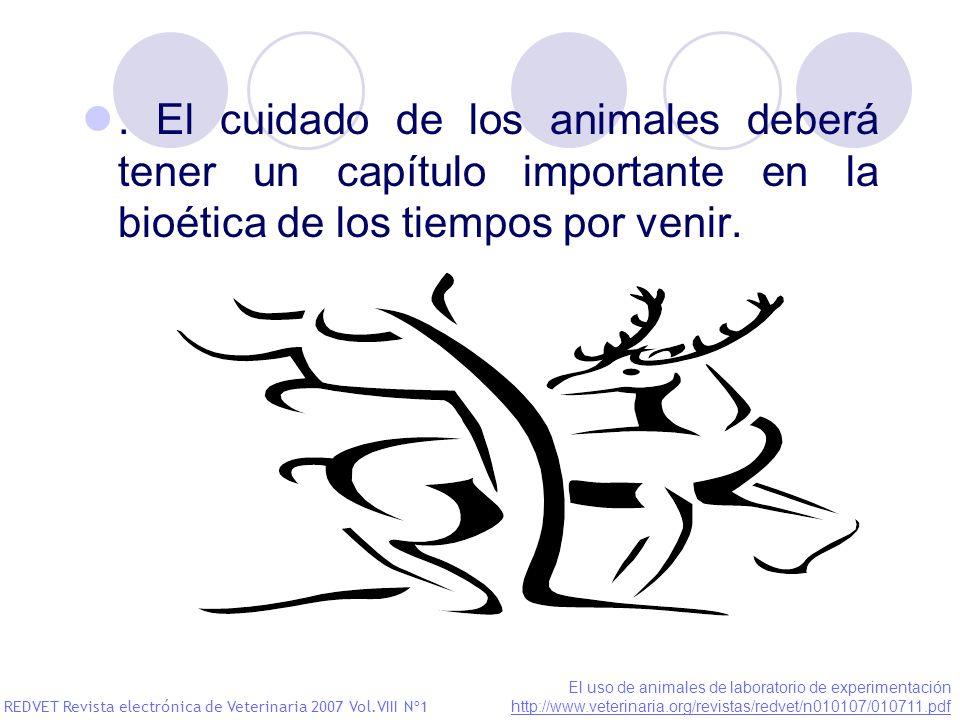 . El cuidado de los animales deberá tener un capítulo importante en la bioética de los tiempos por venir.
