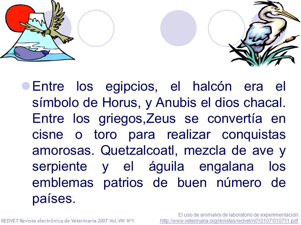 Entre los egipcios, el halcón era el símbolo de Horus, y Anubis el dios chacal. Entre los griegos,Zeus se convertía en cisne o toro para realizar conquistas amorosas. Quetzalcoatl, mezcla de ave y serpiente y el águila engalana los emblemas patrios de buen número de países.