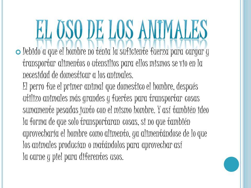 EL USO DE LOS ANIMALES