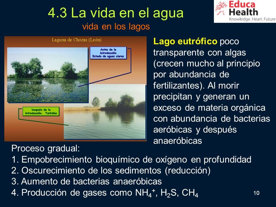 4.3 La vida en el agua vida en los lagos