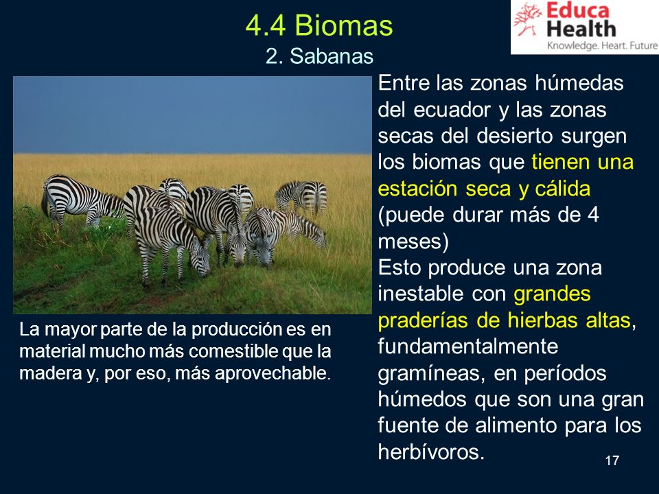 4.4 Biomas 2. Sabanas