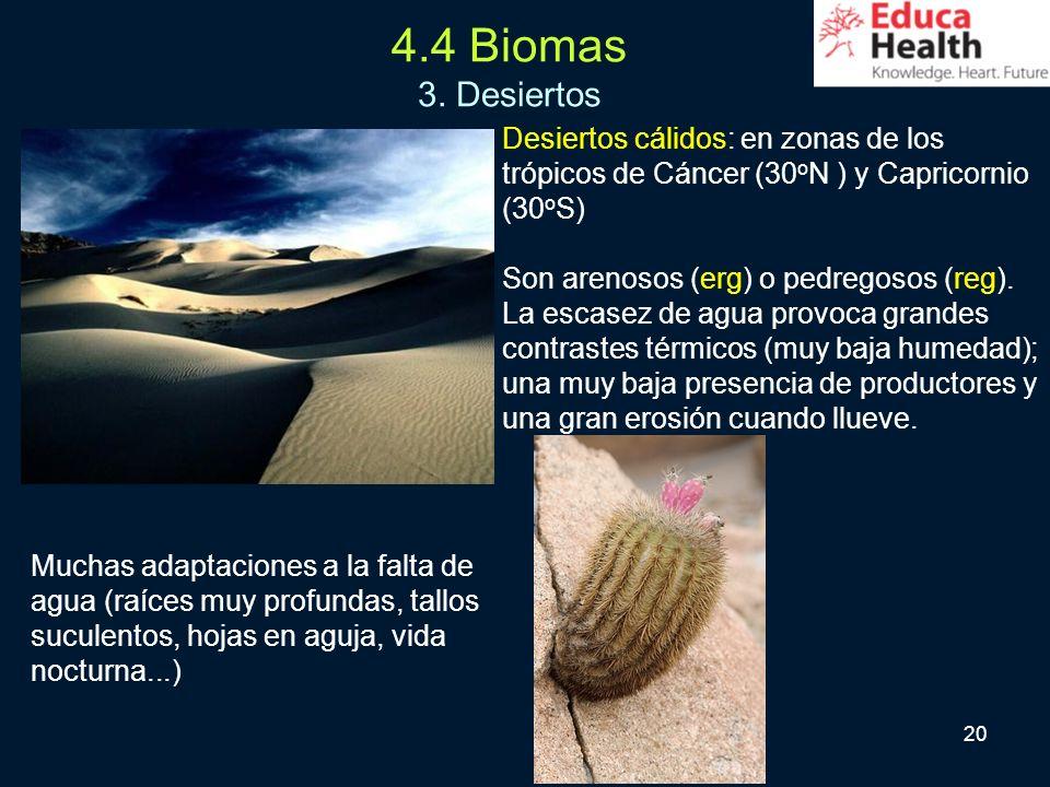 4.4 Biomas 3. Desiertos Desiertos cálidos: en zonas de los trópicos de Cáncer (30oN ) y Capricornio (30oS)