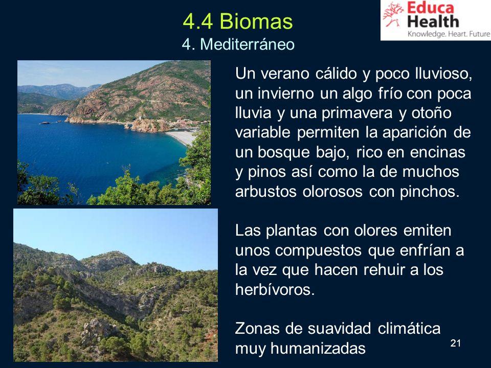 4.4 Biomas 4. Mediterráneo