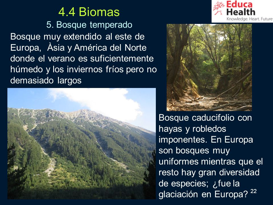 4.4 Biomas 5. Bosque temperado