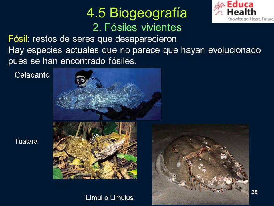 4.5 Biogeografía 2. Fósiles vivientes
