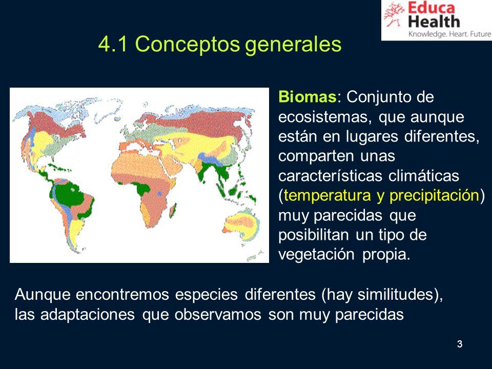 4.1 Conceptos generales