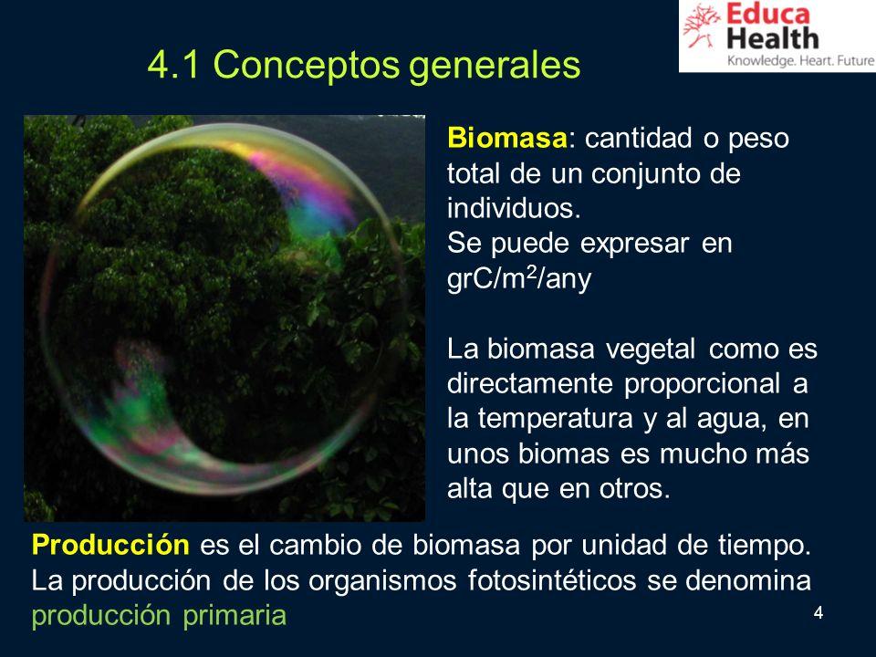 4.1 Conceptos generales Biomasa: cantidad o peso total de un conjunto de individuos. Se puede expresar en grC/m2/any.