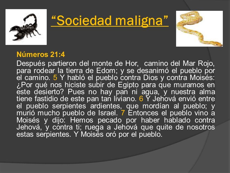 Sociedad maligna Números 21:4