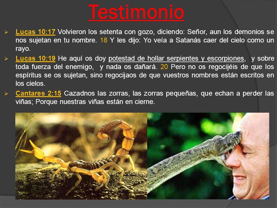 Testimonio
