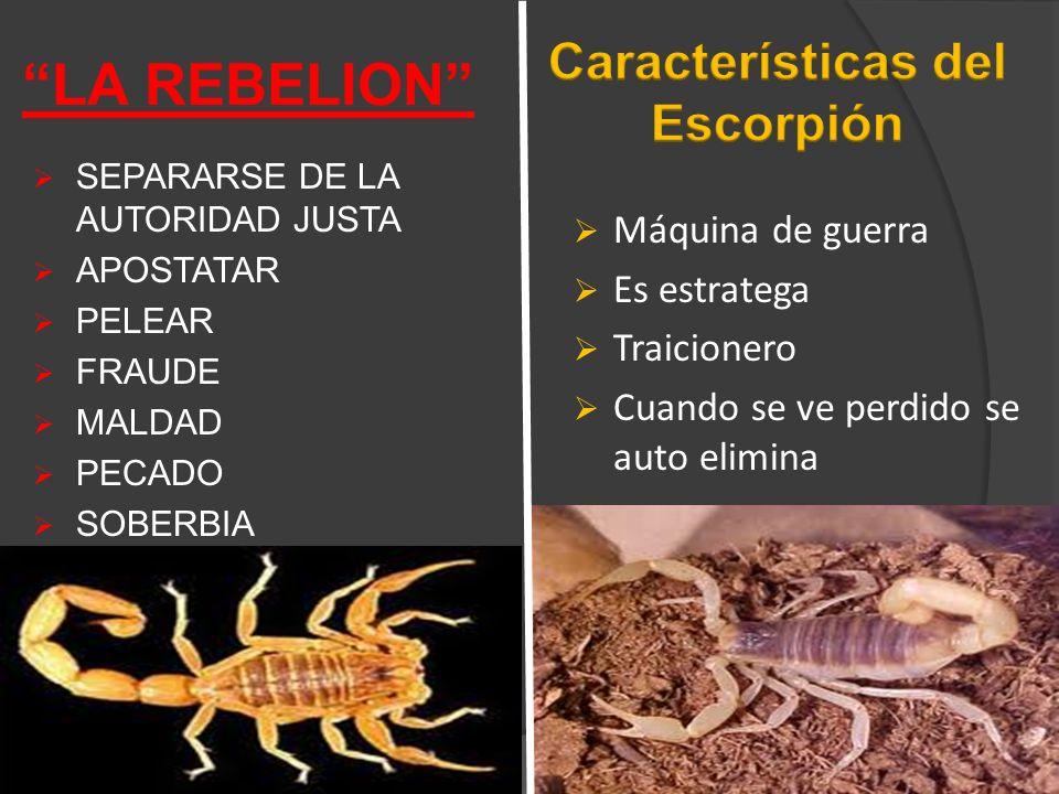 Características del Escorpión