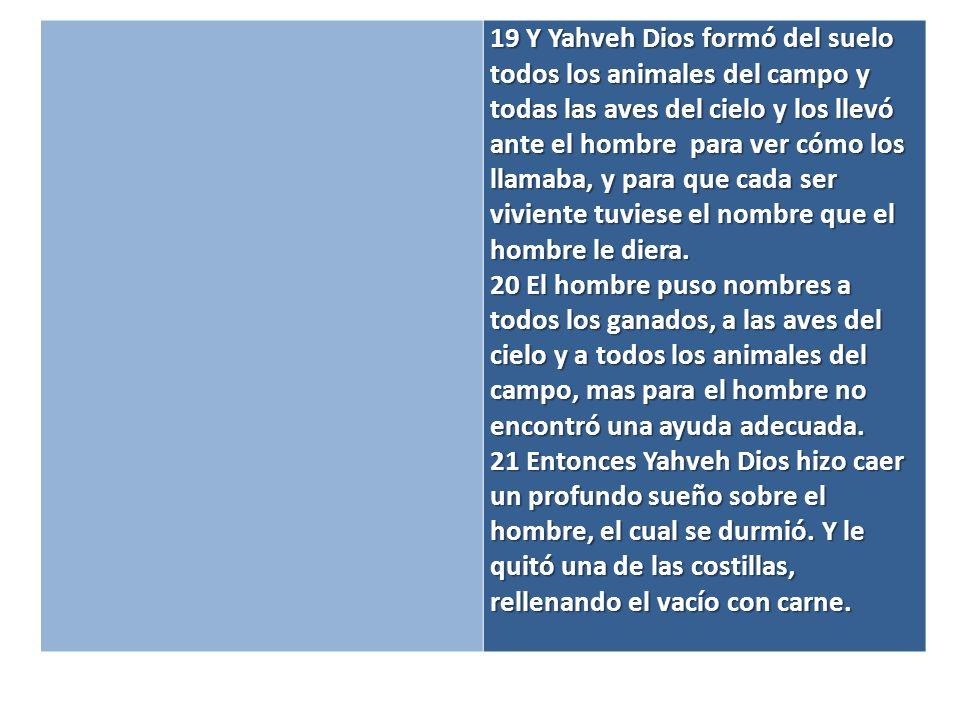 19 Y Yahveh Dios formó del suelo todos los animales del campo y todas las aves del cielo y los llevó ante el hombre para ver cómo los llamaba, y para que cada ser viviente tuviese el nombre que el hombre le diera.