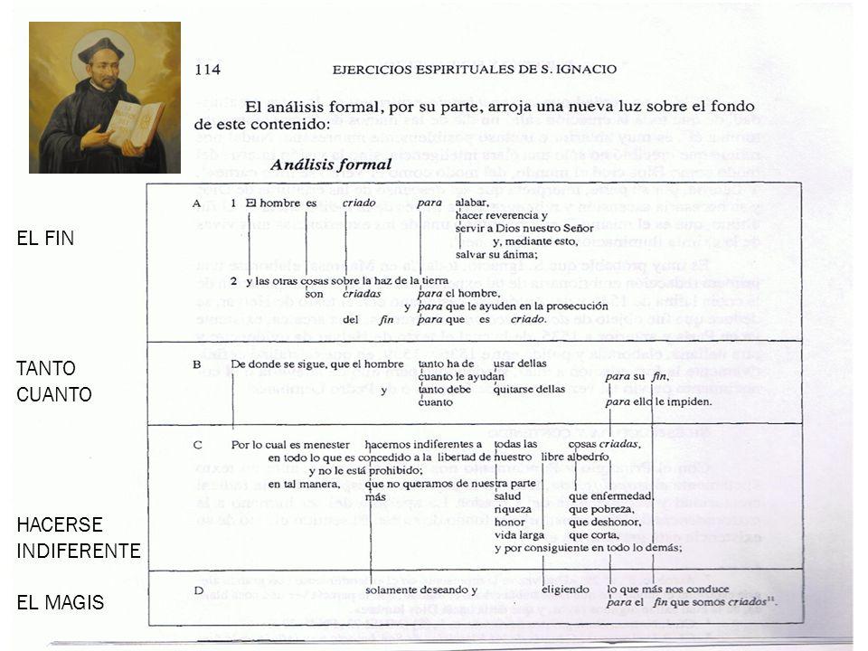 23 Estructura y contenido del fundamento.