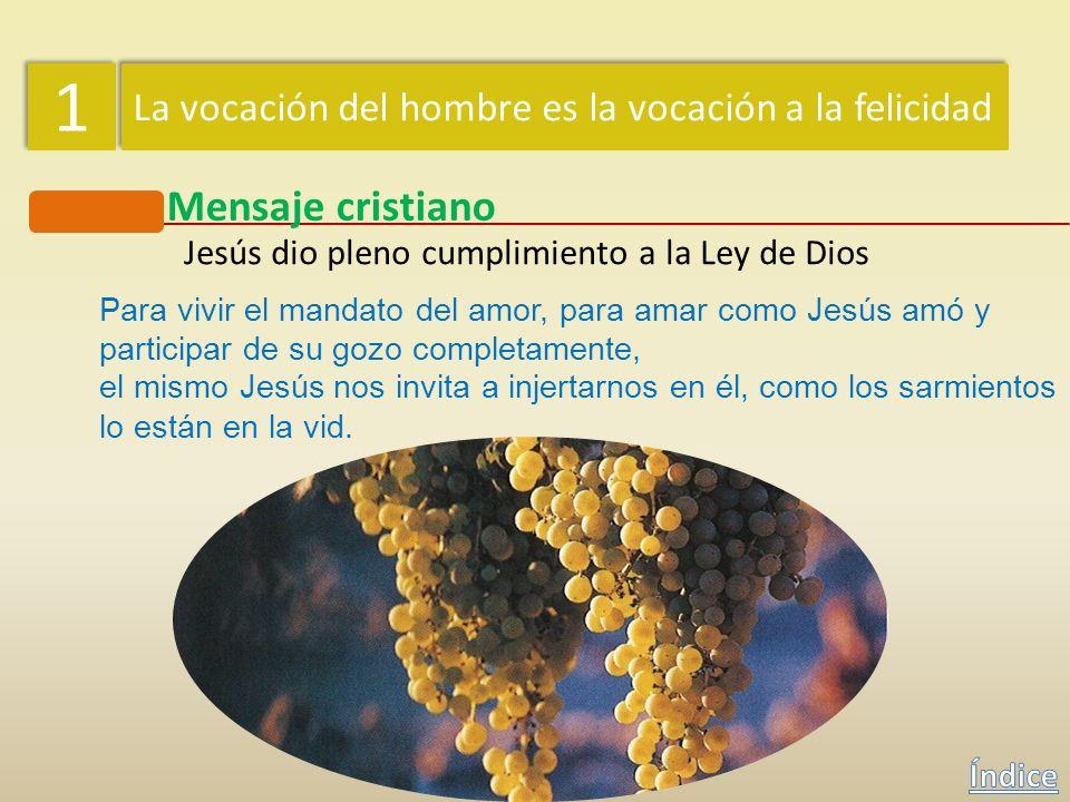 Jesús dio pleno cumplimiento a la Ley de Dios