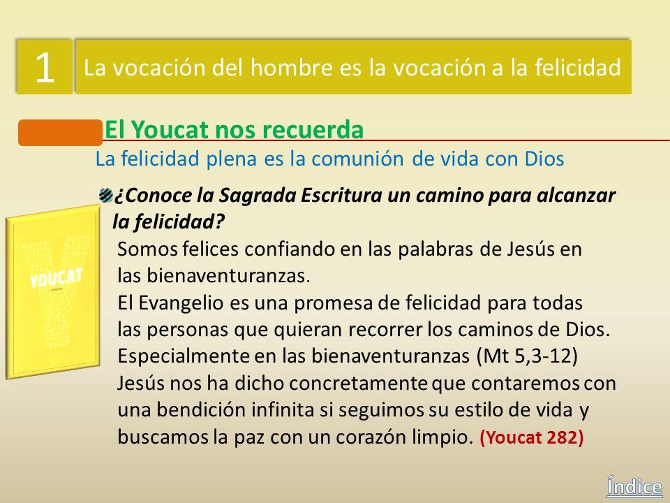La felicidad plena es la comunión de vida con Dios