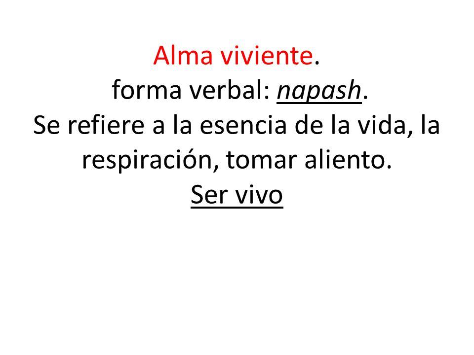 Alma viviente. forma verbal: napash