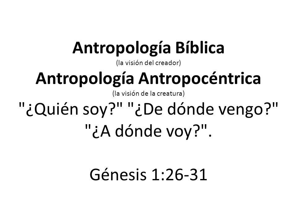 Antropología Bíblica (la visión del creador) Antropología Antropocéntrica (la visión de la creatura) ¿Quién soy ¿De dónde vengo ¿A dónde voy .