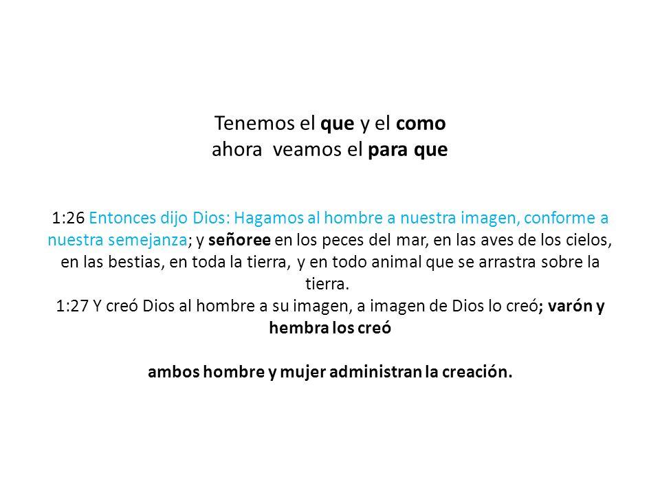 Tenemos el que y el como ahora veamos el para que 1:26 Entonces dijo Dios: Hagamos al hombre a nuestra imagen, conforme a nuestra semejanza; y señoree en los peces del mar, en las aves de los cielos, en las bestias, en toda la tierra, y en todo animal que se arrastra sobre la tierra. 1:27 Y creó Dios al hombre a su imagen, a imagen de Dios lo creó; varón y hembra los creó ambos hombre y mujer administran la creación.