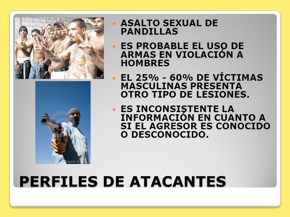 PERFILES DE ATACANTES ASALTO SEXUAL DE PANDILLAS