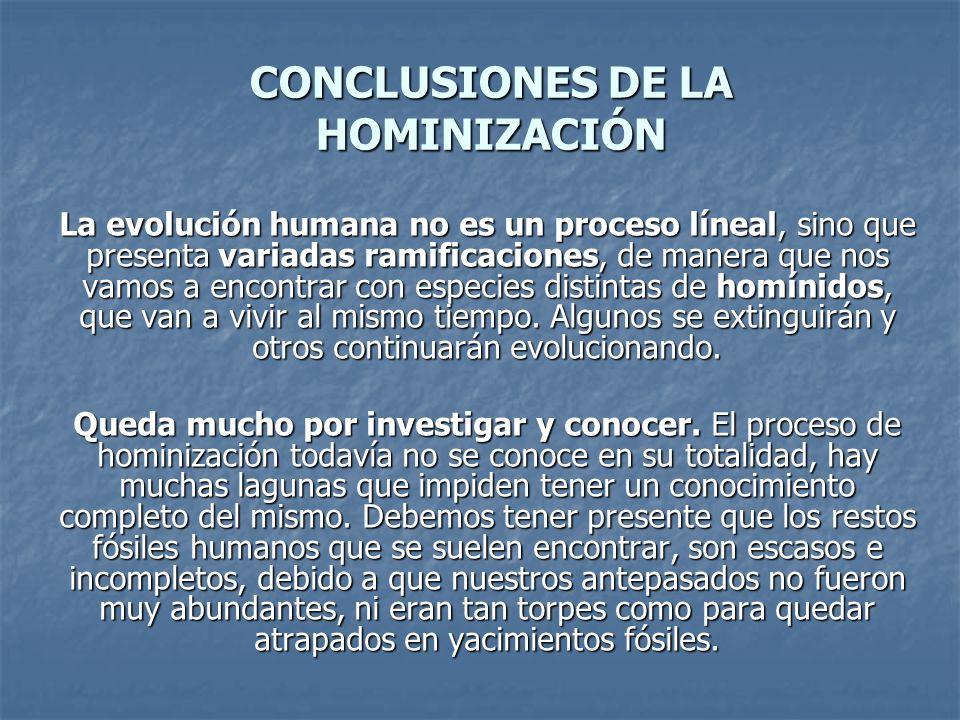 CONCLUSIONES DE LA HOMINIZACIÓN