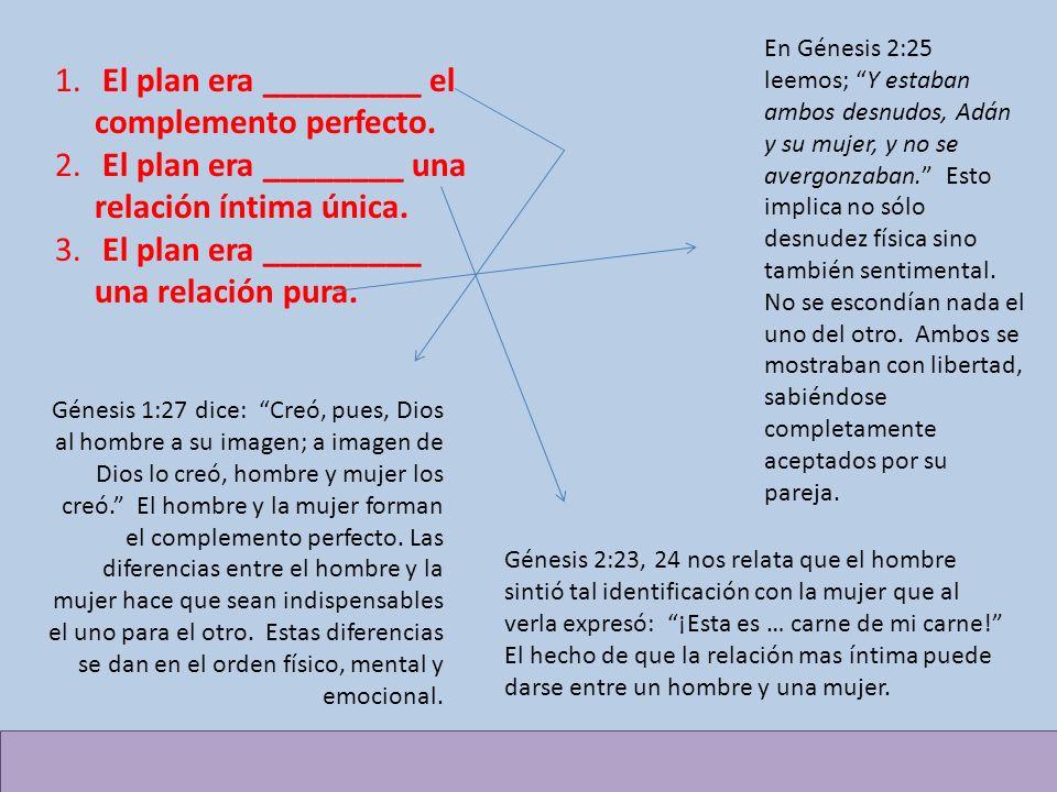 El plan era _________ el complemento perfecto.