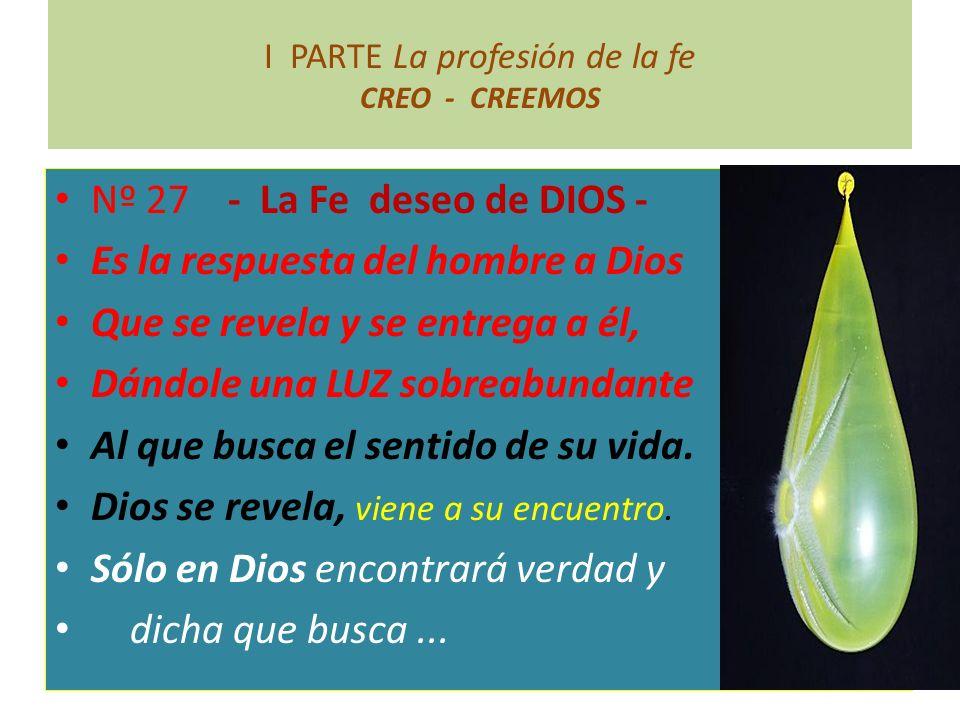 I PARTE La profesión de la fe CREO - CREEMOS