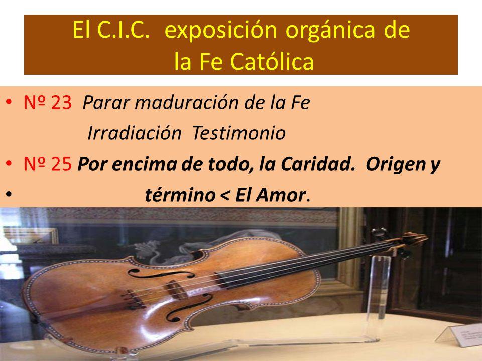 El C.I.C. exposición orgánica de la Fe Católica