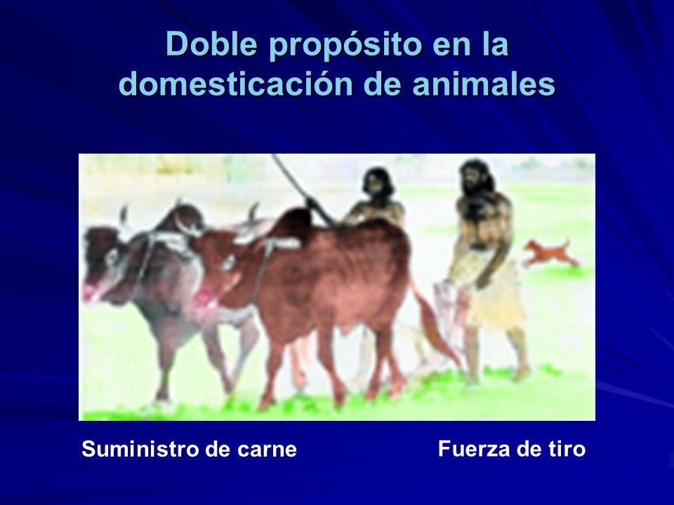 Doble propósito en la domesticación de animales
