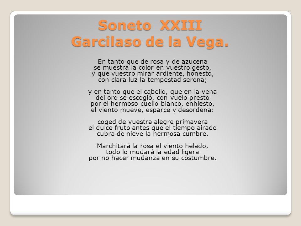 Soneto XXIII Garcilaso de la Vega.