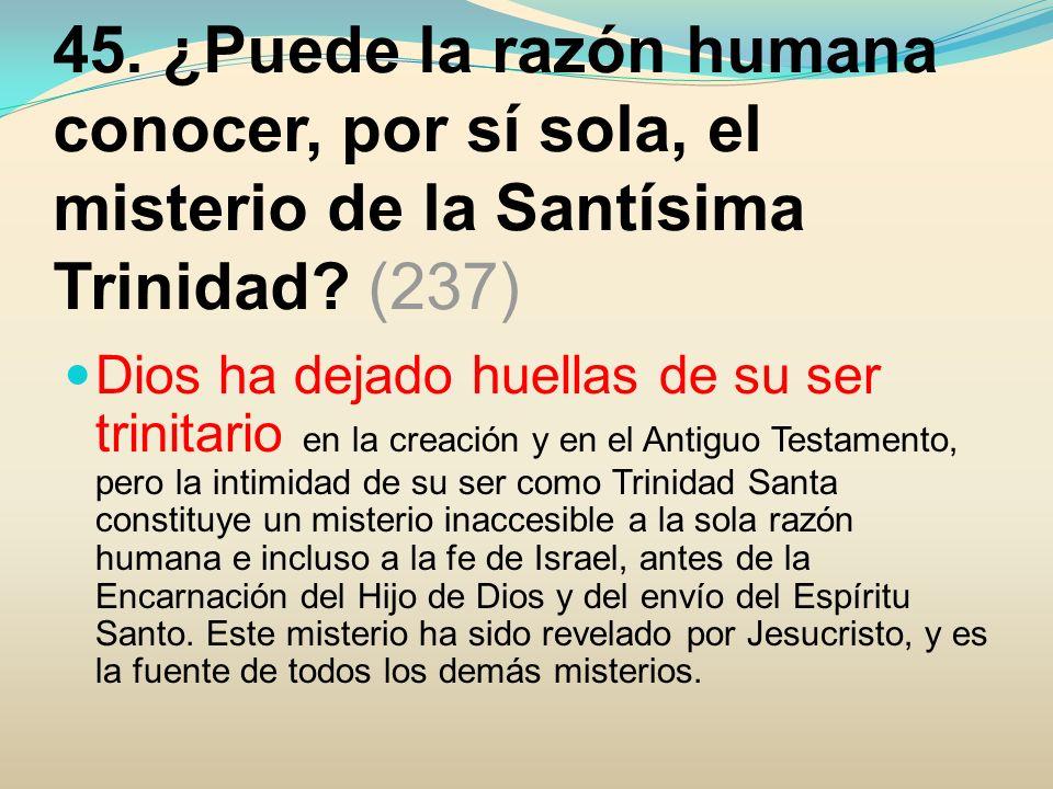 45. ¿Puede la razón humana conocer, por sí sola, el misterio de la Santísima Trinidad (237)