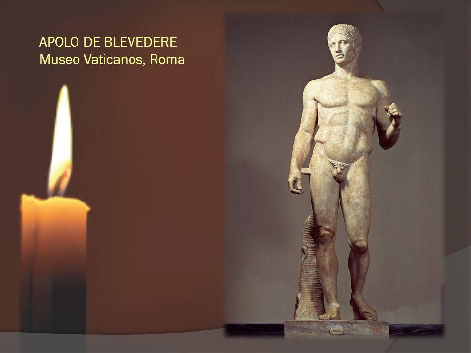 APOLO DE BLEVEDERE Museo Vaticanos, Roma