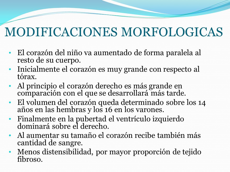 MODIFICACIONES MORFOLOGICAS