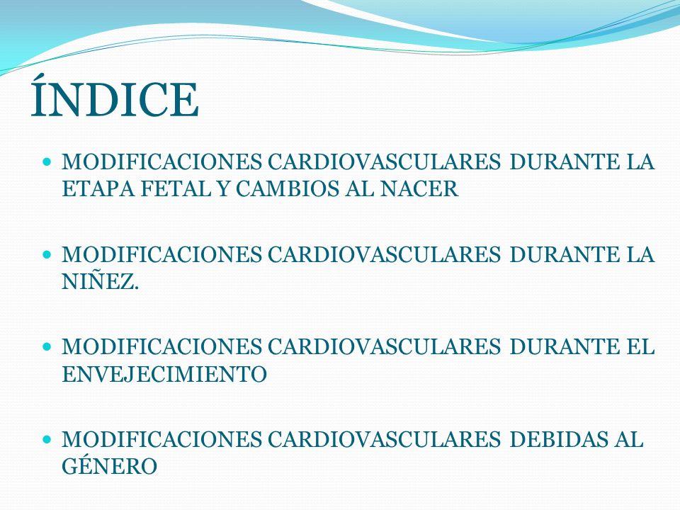 MODIFICACIONES CARDIOVASCULARES
