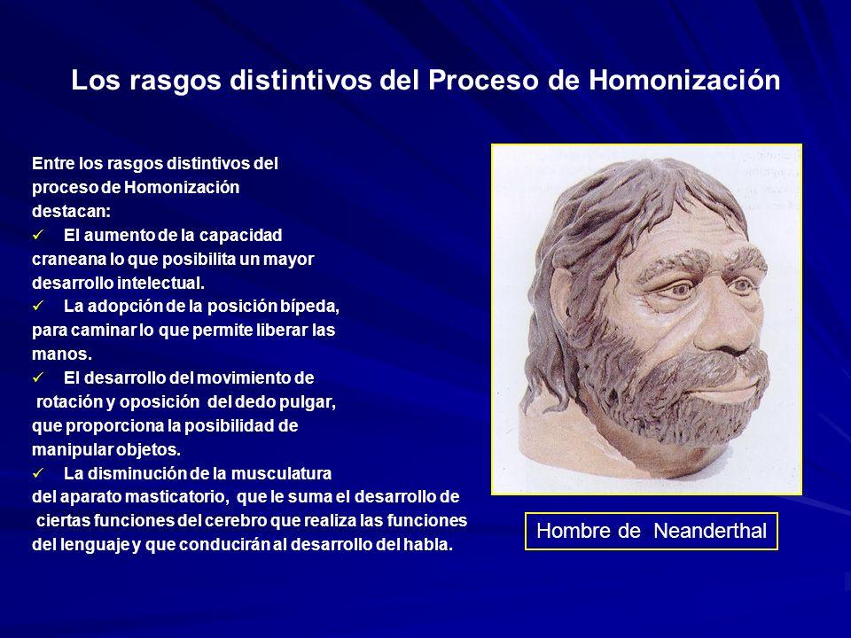 Los rasgos distintivos del Proceso de Homonización