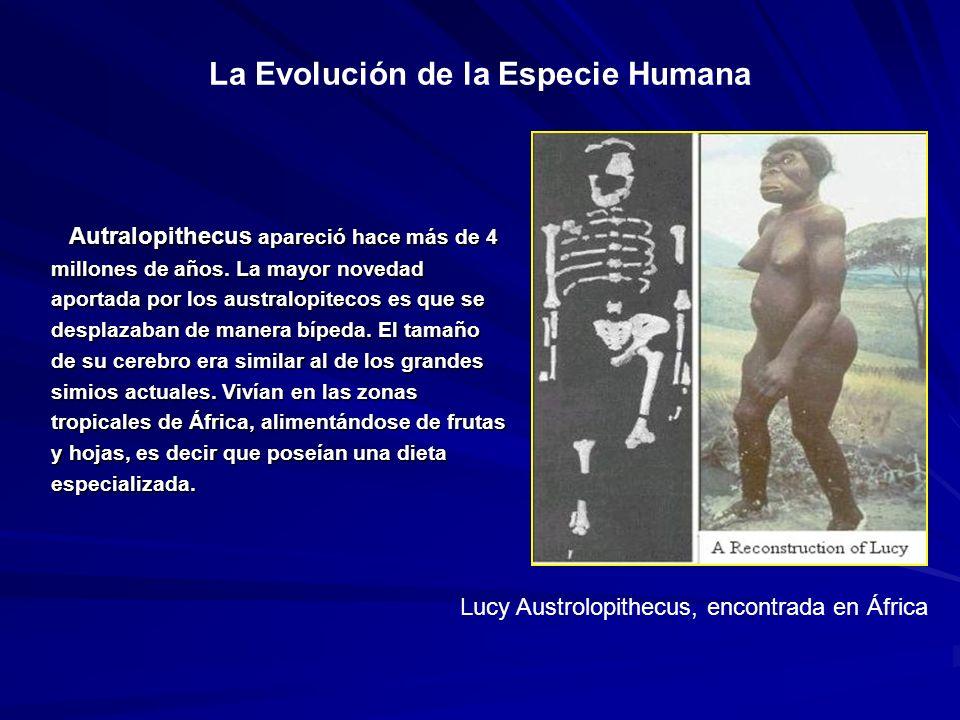 La Evolución de la Especie Humana