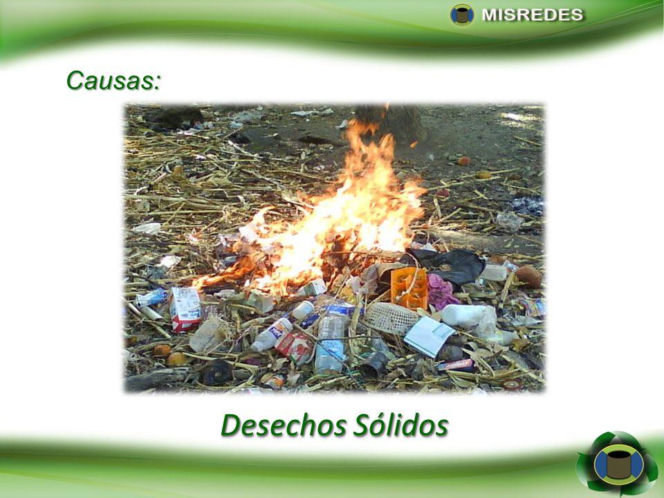 Causas: Desechos Sólidos