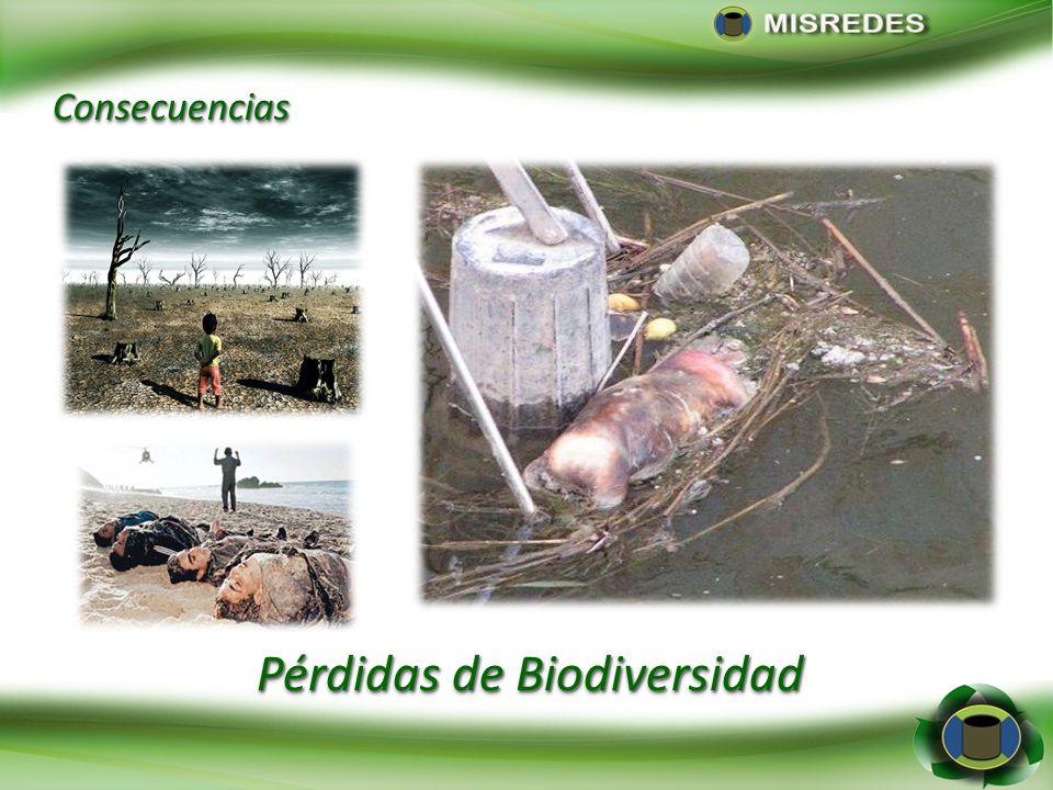 Pérdidas de Biodiversidad